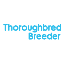 Thoroughbred Breeder Package